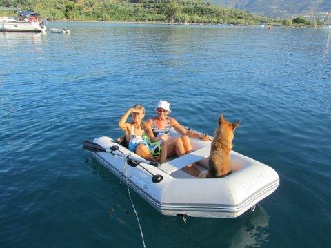 img1651copie chien dans - Un chien dans un bateau...