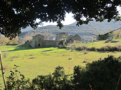 2011 c'est bientôt fini !!! dans 09 croisière mediterranée dec 2011 IMG_4612-copie