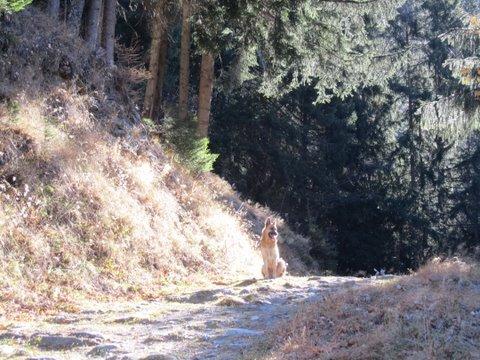escapade continentale: chamonix du 17 au 23 novembre dans 08 croisière mediterranée nov 2011 img3983copie