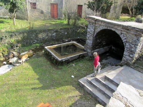 animaux de randonnées et pointe de la Mortella ... dans 12 croisière mediterranée mars 2012 IMG_5278-copie